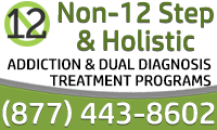 Non - 12 Step & Holistic