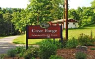 Cove Forge Behavioral Health Center